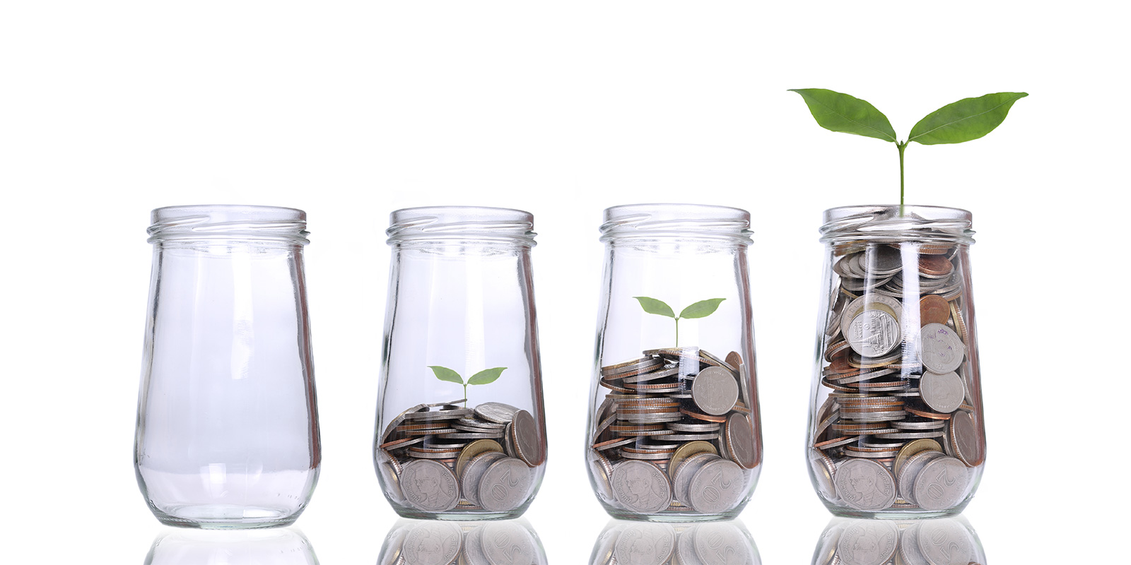 startup-investment
